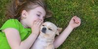 Foto Bambini autistici: il cane come terapia