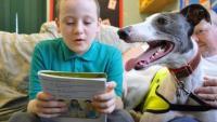 Foto Il Cane aiuta i bambini ad apprendere meglio a scuola