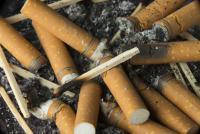 Foto Nicotina tossica per i Cani