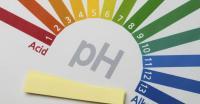 Foto Ph urine Gatto: valori alti e bassi