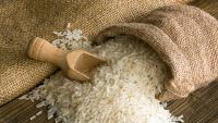 Foto Il Cane può mangiare riso?