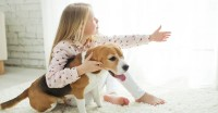 Foto Voglio un cane: quale scegliere?