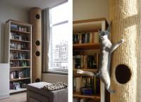 Foto Gatto in appartamento - Cosa bisogna sapere