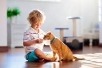 Foto Il dolore dei bambini per la morte del loro animale domestico