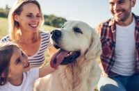 Foto Il grande potere emotivo dei cani in famiglia